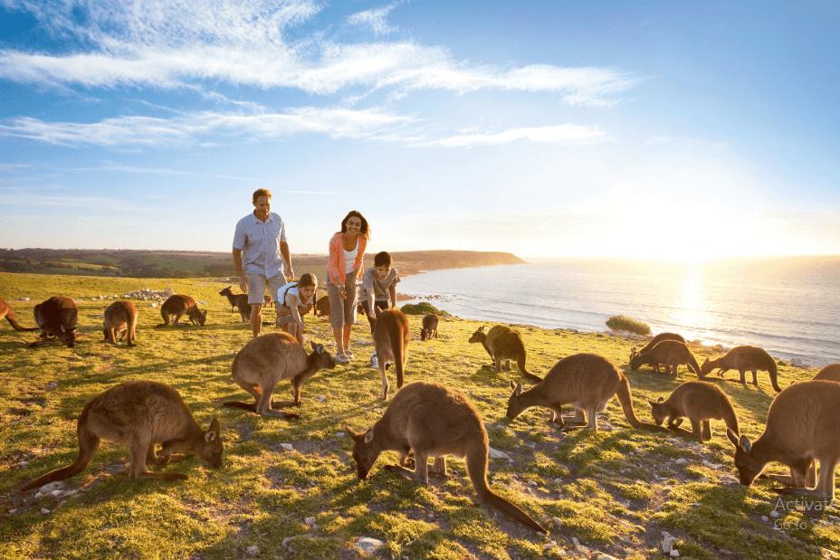 du lịch Úc mùa đông